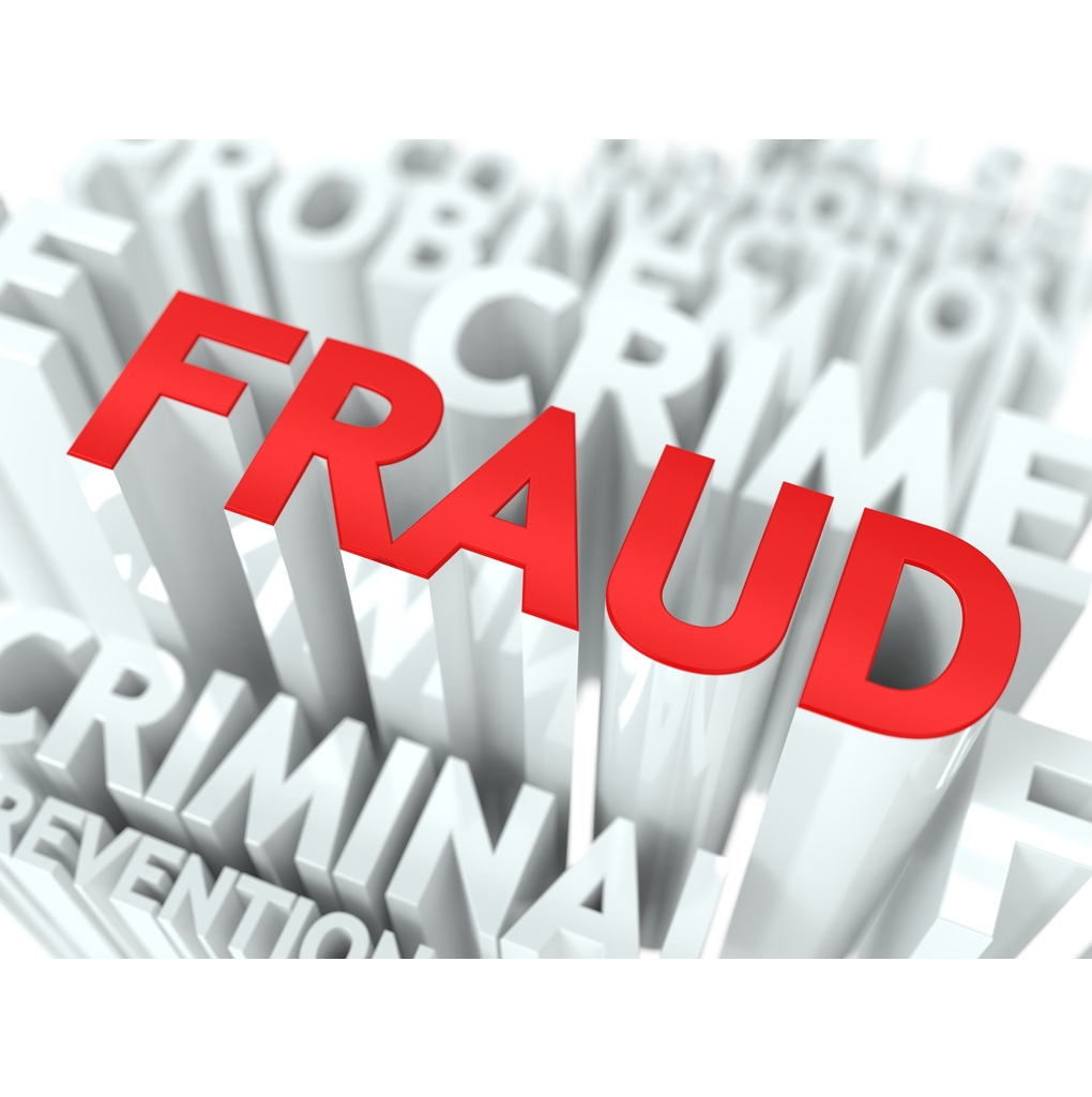 """The word """"FRAUD"""" lifted and coloured amongst words relating to its investigation"""