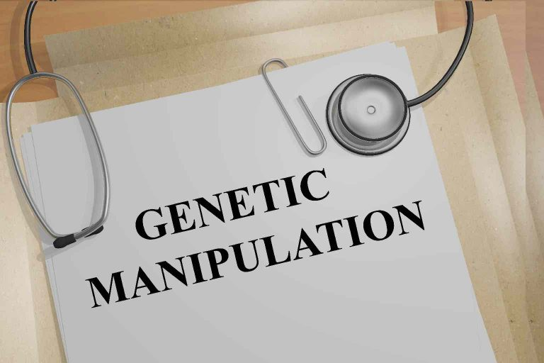 """Digital image of a folder with the words """"GENETIC MANIPULATION"""" written on the outside and a stethoscope across it."""